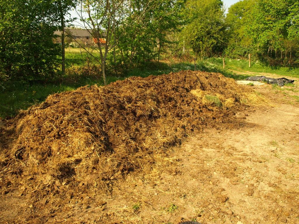 Les ferments de la terre - compost bretagne paimpont legume lactofermentation lactoferment biodynamie bio AB